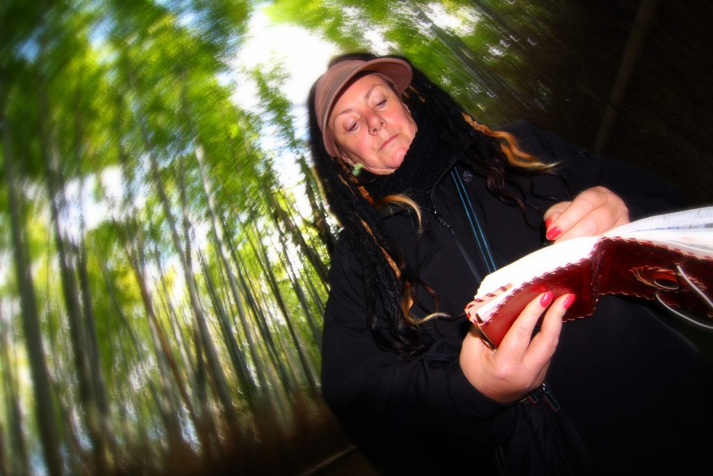 Cheryl Harrison Artist, Arashiyama Bamboo Grove, Bamboo Forest, Japan, Kyoto, Cheryl Harrison artist, sketchbook, drawing, travel, notebook, journal,
